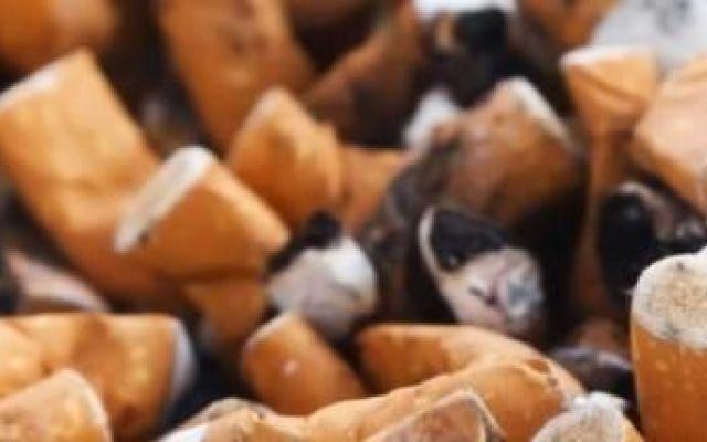 Brutte notizie per fumatori e consumatori di gomma: multa salata a chi butta per terra mozziconi e cicche #ambiente #multe #sigarette #rifiuti