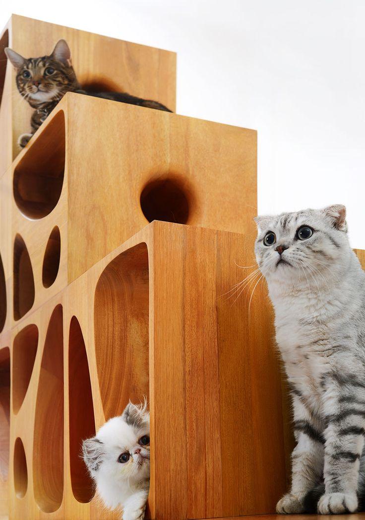 cat-table-2.0-LYCS-architecture-designboom-03
