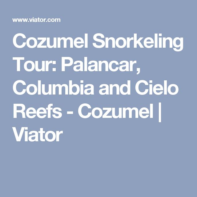 Cozumel Snorkeling Tour: Palancar, Columbia and Cielo Reefs - Cozumel | Viator