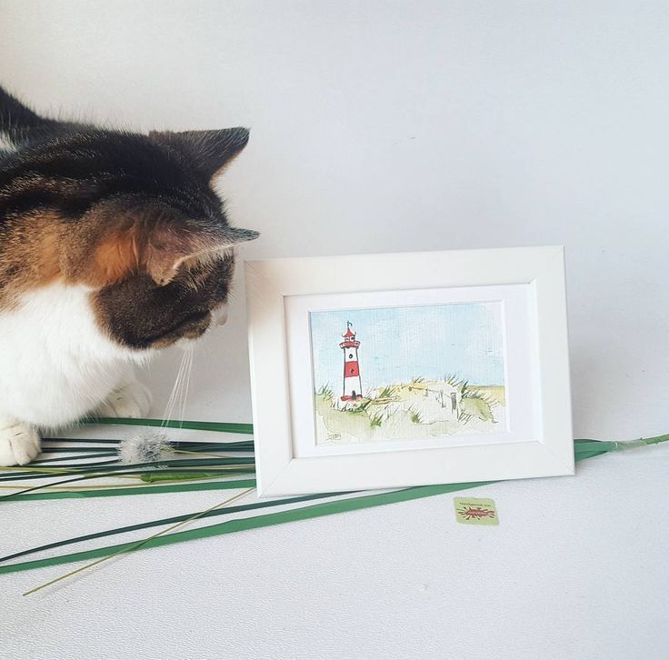 It seems my personal packaging assistant Lillipüss (one of my two @katzenschafe) can't wait until I can finally put it in a box box for delivery! But right now it's still available in my onlineshops wandklex.etsy.com and wandklex.dawanda.com so he has to be patient. . Hand painted original water color painted with schmincke Horadam water color on @hahnemuehle_global Britannia 300g rough paper painting and product photo  @wandklex Kunstatelier . #wandklex #meetthemaker #catcontent #catsofig…