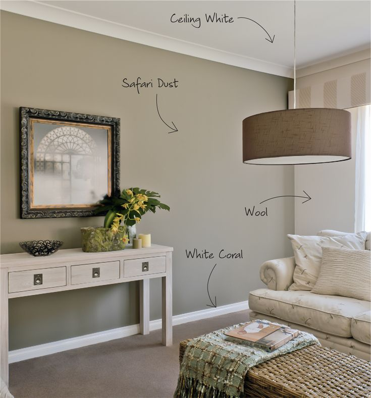 Interior Paint Color Schemes: Berger Paints Interior Decoration Lounge Room Colours