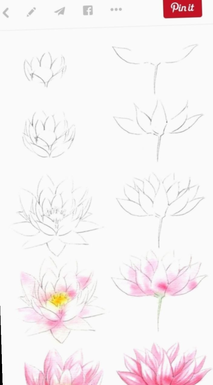Drawing Flowers Videos Abstract Drawing In 2020 Flower Drawing Flower Drawing Tutorials Easy Flower Drawings