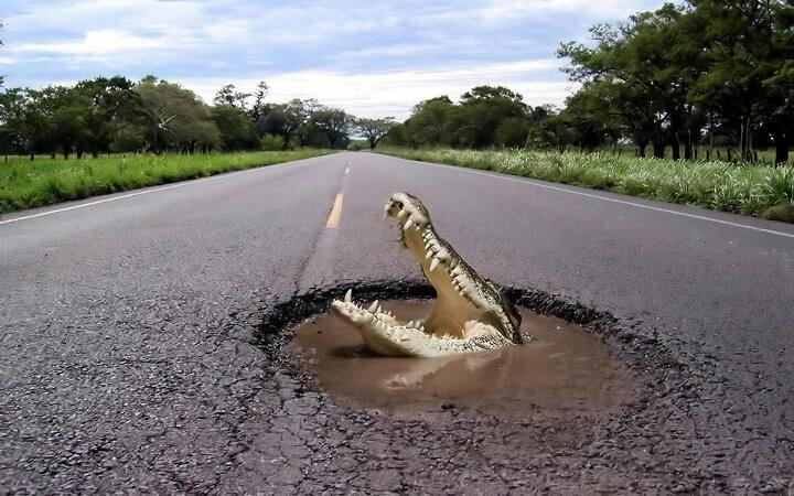 The local pothole problem.