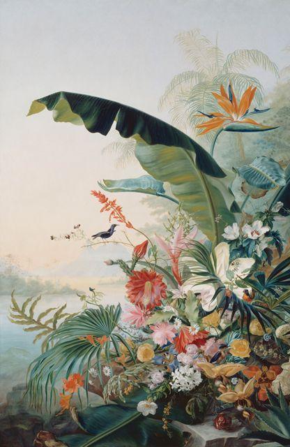 Fleurs exotiques, #Jean_Benner-Frais (1836 - 1909) #flowers
