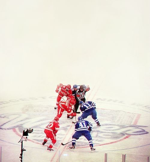 Winter Classic 2014. Detroit Red Wings vs. Toronto Maple Leafs