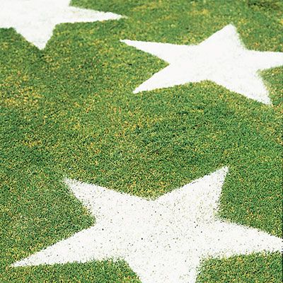 Getting festive with flour: Outdoor Wedding, Holiday, Lawn Stars, Yard, July Party, 4Th Of July, July 4Th, July Ideas, Party Ideas