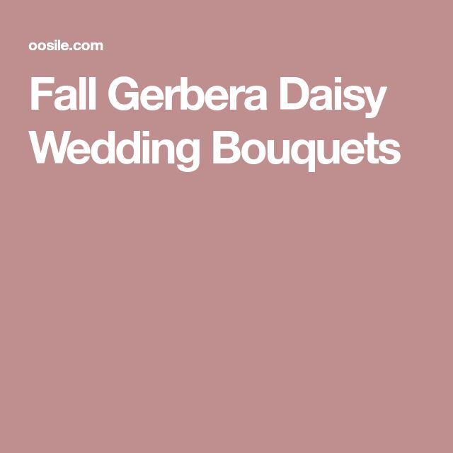 Fall Gerbera Daisy Wedding Bouquets