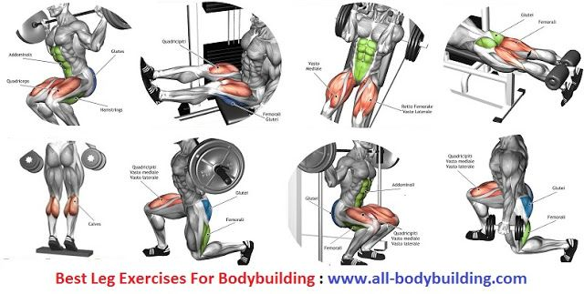 how to build up your legs