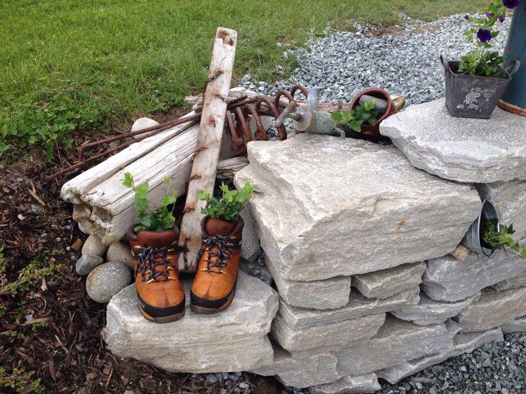 Jeg elsker å plante i gamle sko