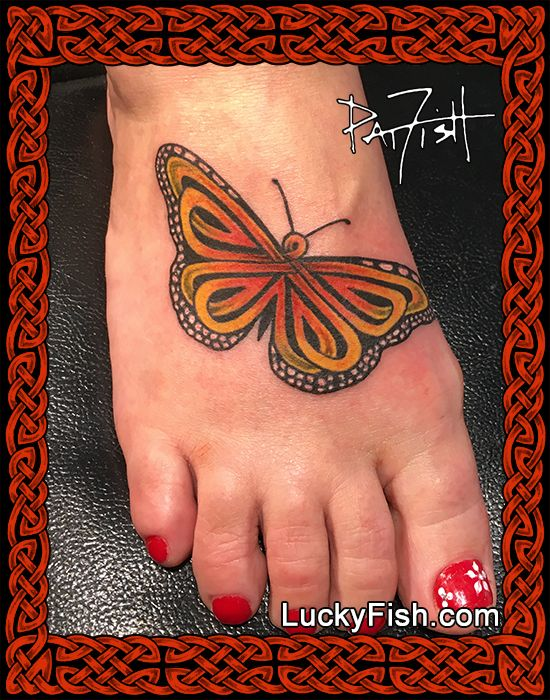 cf8eeeada The Monarch Butterfly is a favorite of those lucky enough to live within  its migratory flight path. To create this pattern I left the distinctive  dots on ...