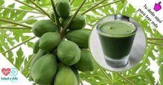 Las hojas de la papaya son muy útiles en la curación y la curación de la fiebre del dengue y el cáncer, y para una buena salud. Según los investigadores de los fitonutrientes en las hojas son grandes antioxidantes, potenciando en gran medida el flujo de sangre. Esto es debido a la papaína, tiene compuestos …