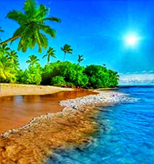 A Trip With A View Discover The Discovered Beautiful Landscapes Beach Wallpaper Nature