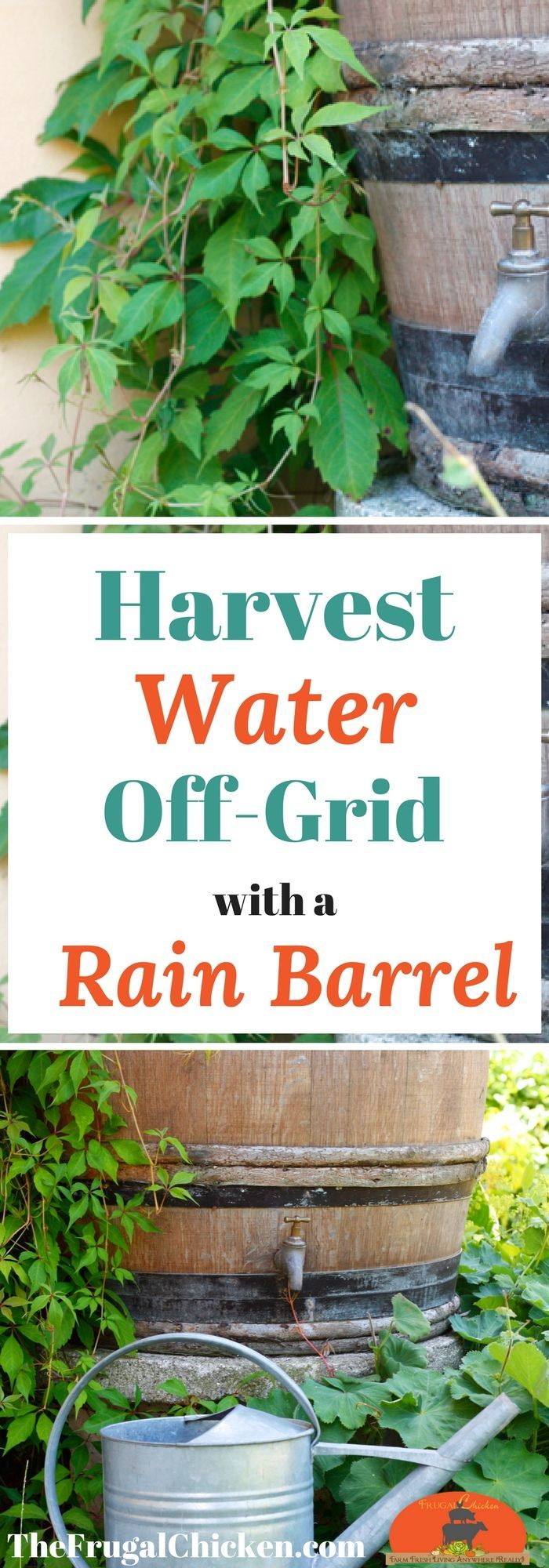 "If you want to harvest water off grid, you will need a rain barrel. And it's surprisingly easy - you can harvest approximately 62"" of water for every 1/10th of an inch of rain! Here's how to select and install a rain barrel for an off-grid water supply!"