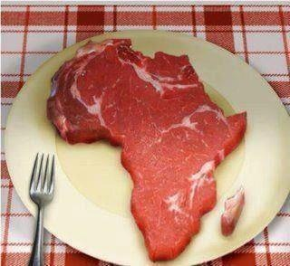 two of my favorite things steak and Africa.(: