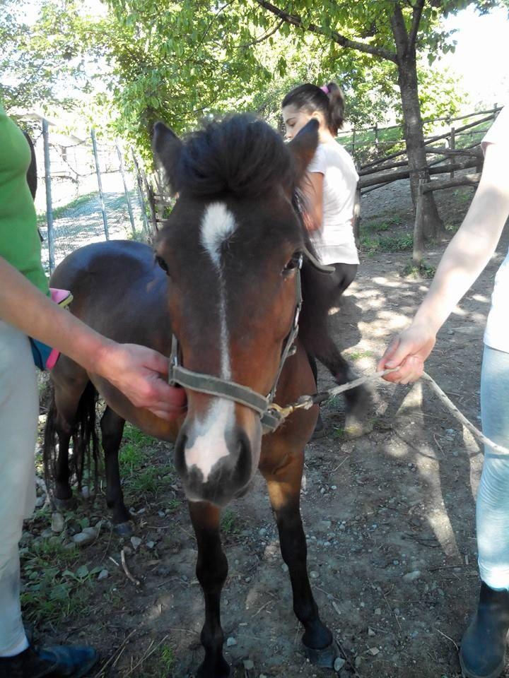 Pepita è diventata uno schianto di pony!