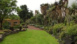 Resultado de imagen para jardin botanico unam