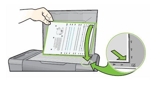 "How to Fix HP Printers ""Alignment Failed"" Error?"