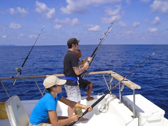25 best ideas about trolling rod holders on pinterest for Boat fishing games