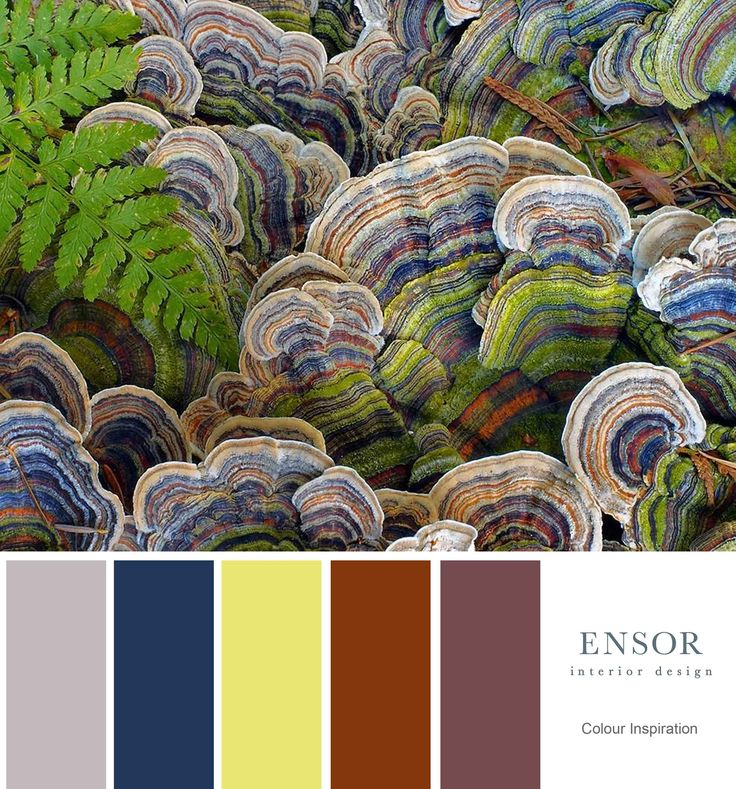Copper, rusts and navy. #colour #inspiration #design #color #ensor www.ensorinteriordesign.co.uk