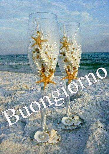 buongiorno stelle marine mare estate