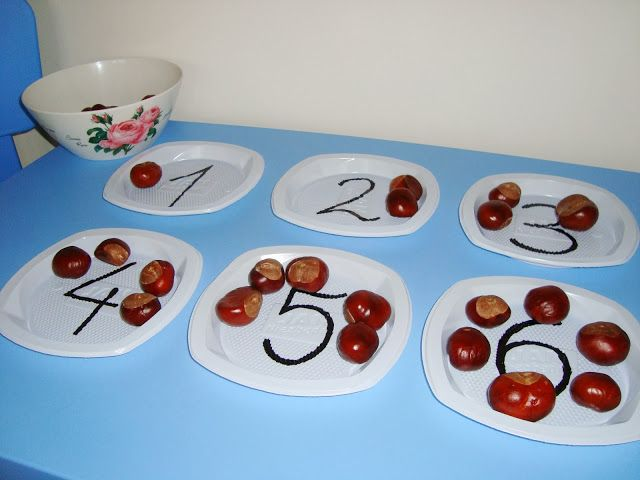 liczenie i dodawanie z kasztanami - zabawa dla dzieci / conker math activity for preeschoolers