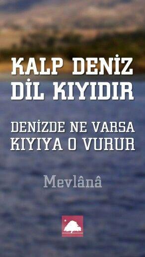 Mevlâna