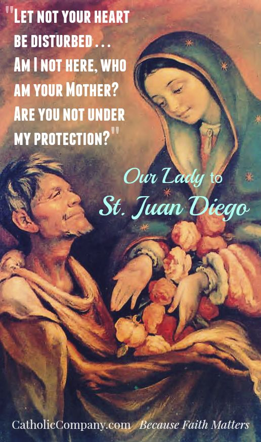 "Our Lady of Guadalupe's comforting words to St. Juan Diego, her ""humble son."""