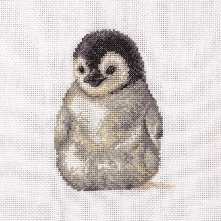 Cute Little Penguin - Anchor Cross Stitch kit