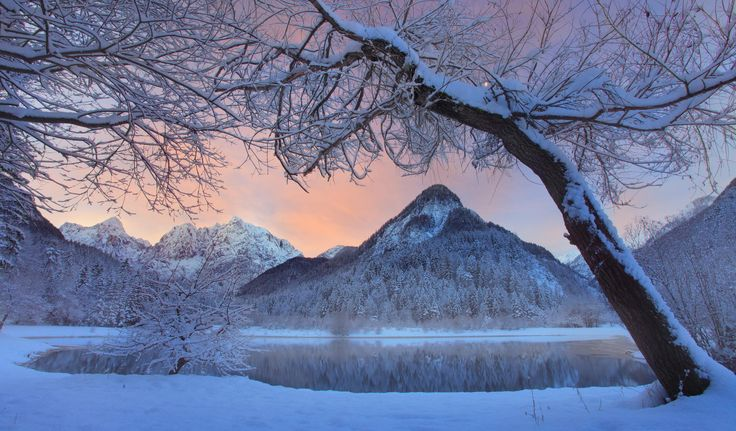 """Photograph Winter fairy tale by the lake by Dan Briski on 500px """"Winter morning by the lake in Julian Alps."""""""
