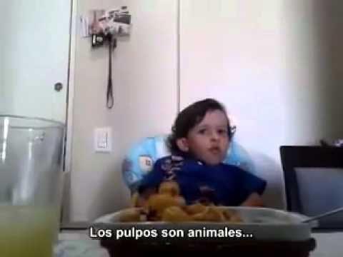 INCREIBLE - Un niño explica por qué no quiere comer animales