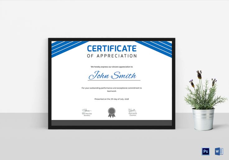 Hospital Training Certificate Template $15 Formats Included - certificate for training