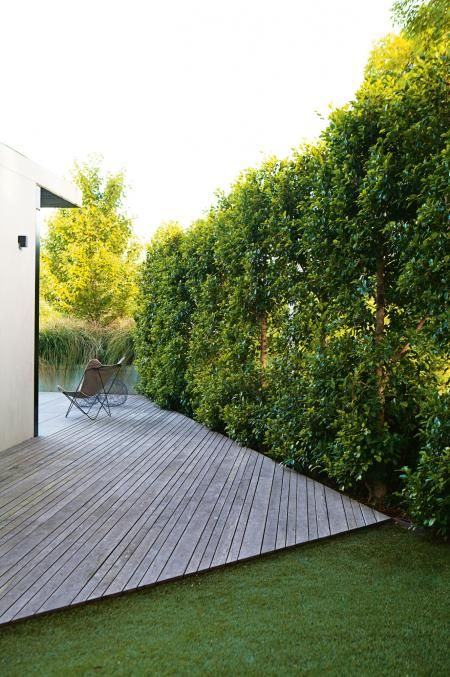 green-lawn-dark-deck