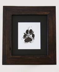 Alpine Dingo 'Ernie' framed paw print