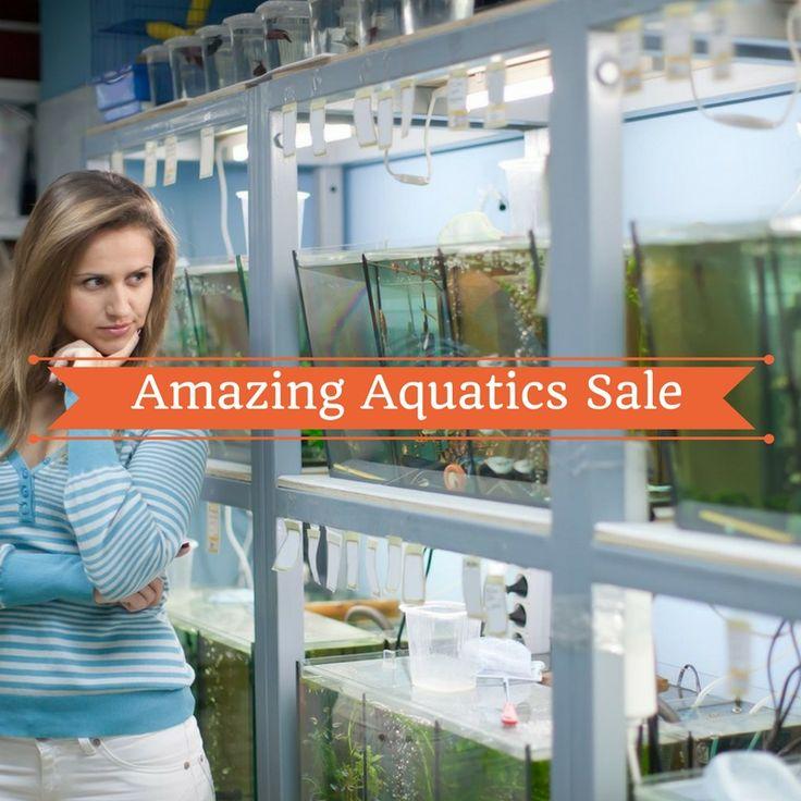 """Amazing Aquatics Sale-Incredible Savings on fish and aquatic must haves at www.petsmart.com/!""  - February only!!! - #pets #animal #aquarium #sale"