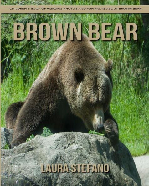 Best 25+ Brown bear facts ideas on Pinterest | Mother ... - photo#21