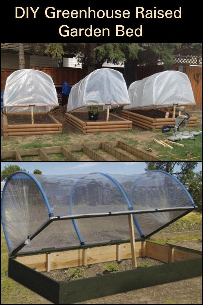 Learn the stepbystep process of building this greenhouse