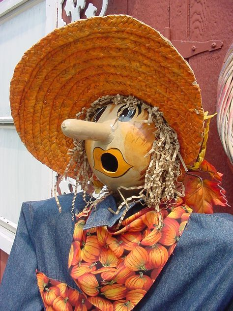 scarecrow pictures | Copyright 2012 Outtamygourd. All rights reserved.