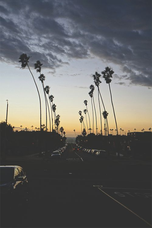 Jbrand Summer Inspiration California Road Trip La Palm Trees Sunset Beautiful Home