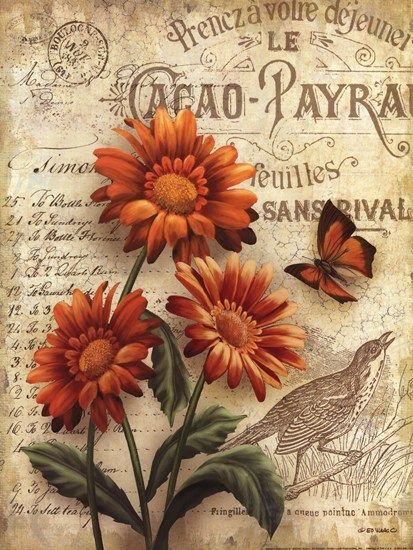 Beauty in Bloom IV by Ed Wargo art print