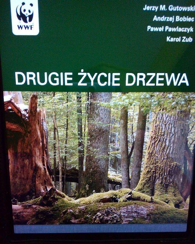 #lektura na dziś :D do pobrania ze strony #wwf pl  #reading #read #czytam #książka #book #goodread #science #nauka #deadwood #drugiezyciedrzewa #theafterlifeofatree #oldwood #staredrzewo #martwedrzewo #natura #nature #las #forest