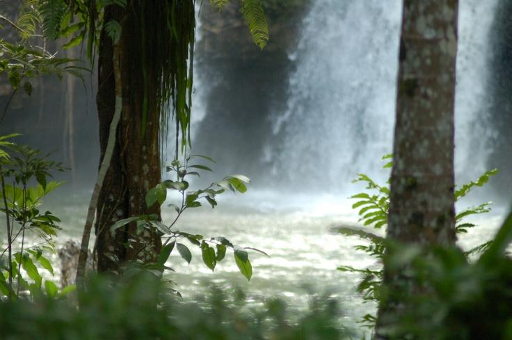 Waterfall at Paronella Park.