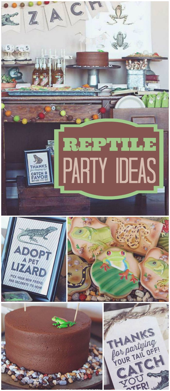 Check out this reptile party! Awesome rock candy cake! See more party planning ideas at CatchMyParty.com!