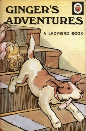 GINGER'S ADVENTURES Vintage Ladybird Book Animal Rhymes Series 401 Matt Hardback 1971 £6.95