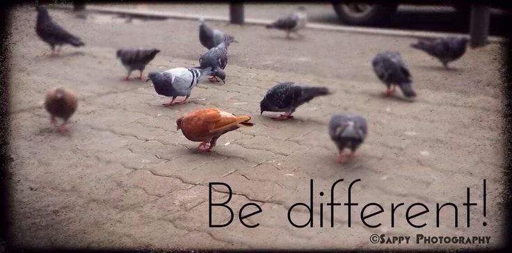 Chose to be different