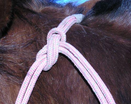 En reb grime bundet ordentlig. Ligge mærke til at hale enden peger BAGUD. Det mindsker risikoen for at enden kommer omkring hestens øje.