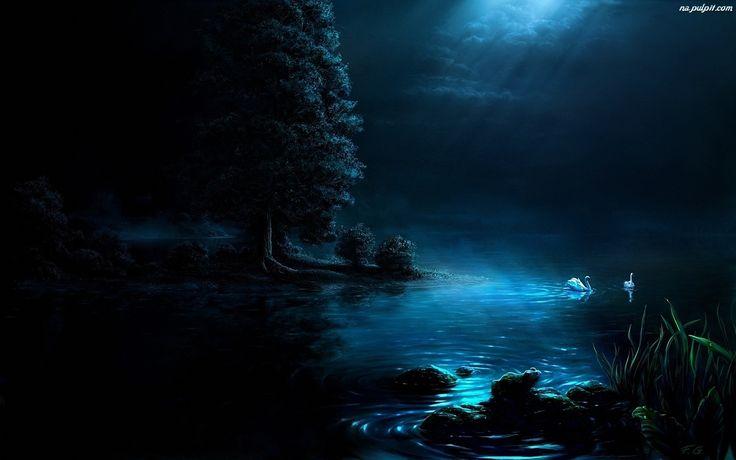 http://www.tapeta-abedzie-noc-jezioro.na-pulpit.com/zdjecia/abedzie-noc-jezioro.jpeg