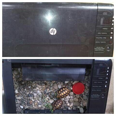casa de morrocollas. Reciclando impresora.