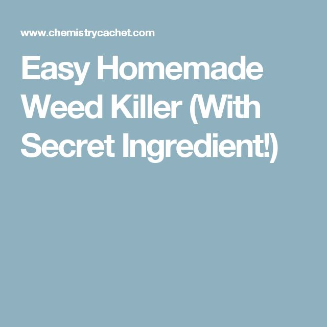 Easy Homemade Weed Killer (With Secret Ingredient!)
