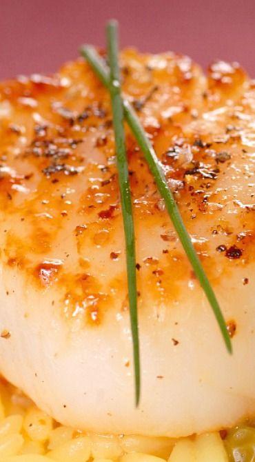 Pan Seared Scallops with Saffron Rice