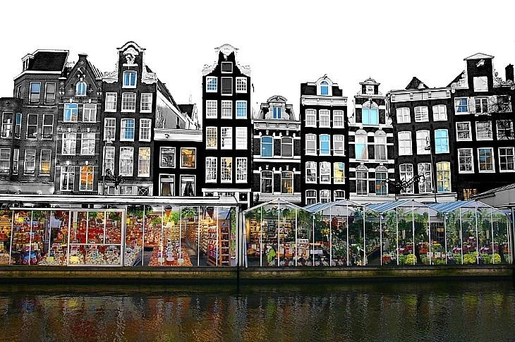 The bloemenmarkt (flower market) is a floating flower market situated on barges on the Singel Canal is filled with an impressive array of plants and flowers, including the famous Dutch tulips.